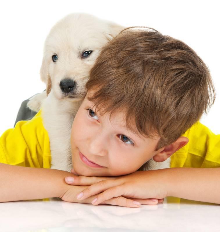 Diferencias y similitudes de educar a humanos y a perros