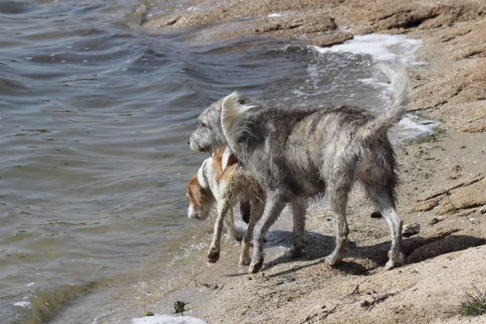 Neska y Noa a punto de lanzarse al agua