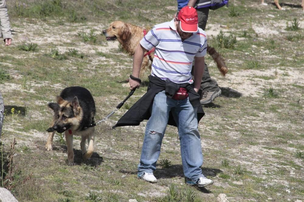 Gus y Carlos - Salida de socialización canina