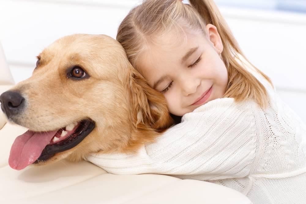 Cómo crear un buen vínculo con tu perro