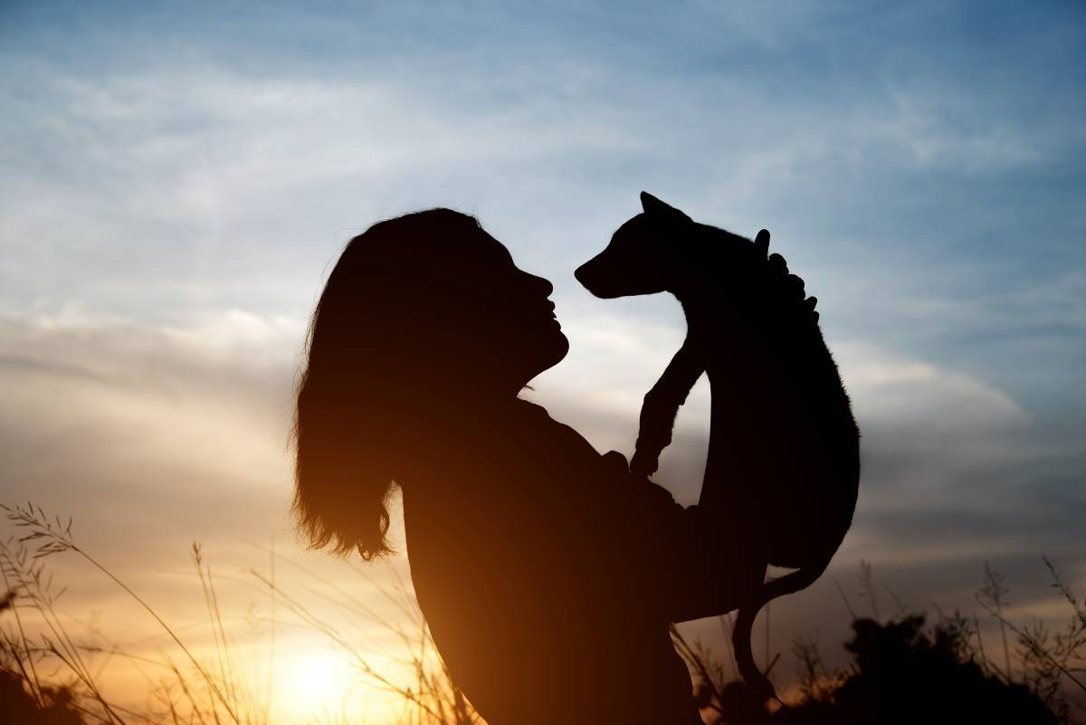 Tu perro tiene… ¿otras prioridades?