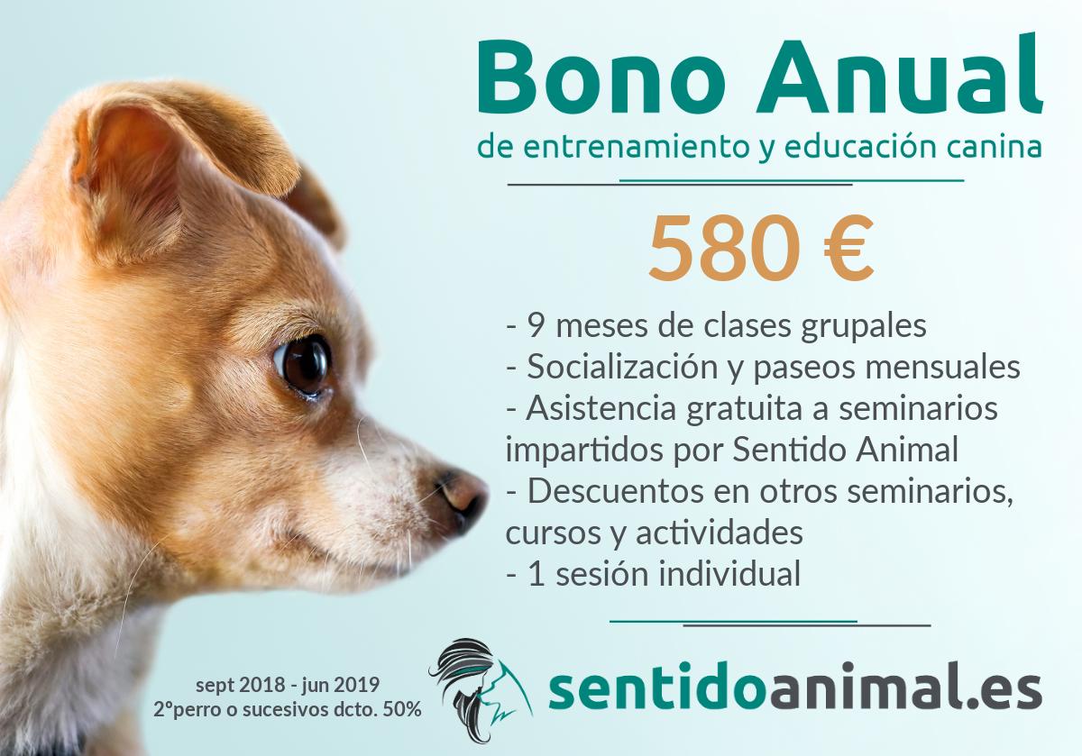 BonoAnual2018-19