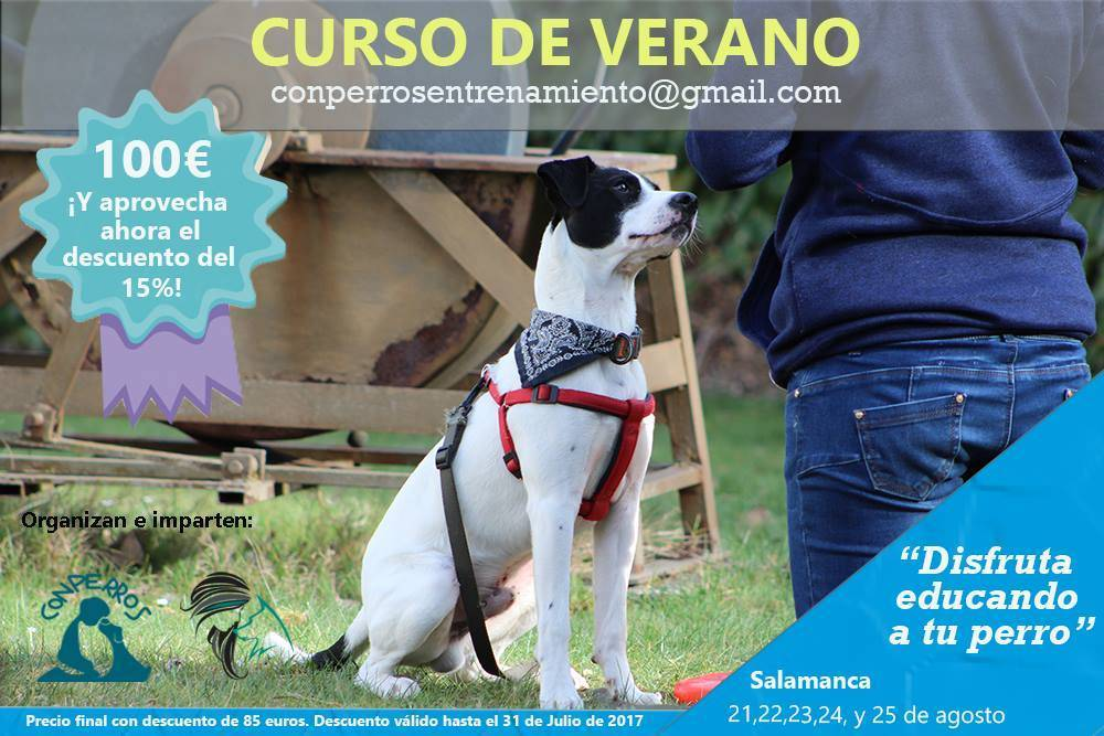 Curso de adiestramiento canino agosto Salamanca