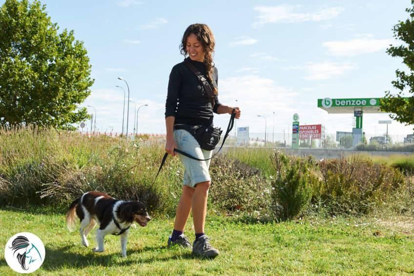 Taller paseo tranquilo - Siente a tu perro_1