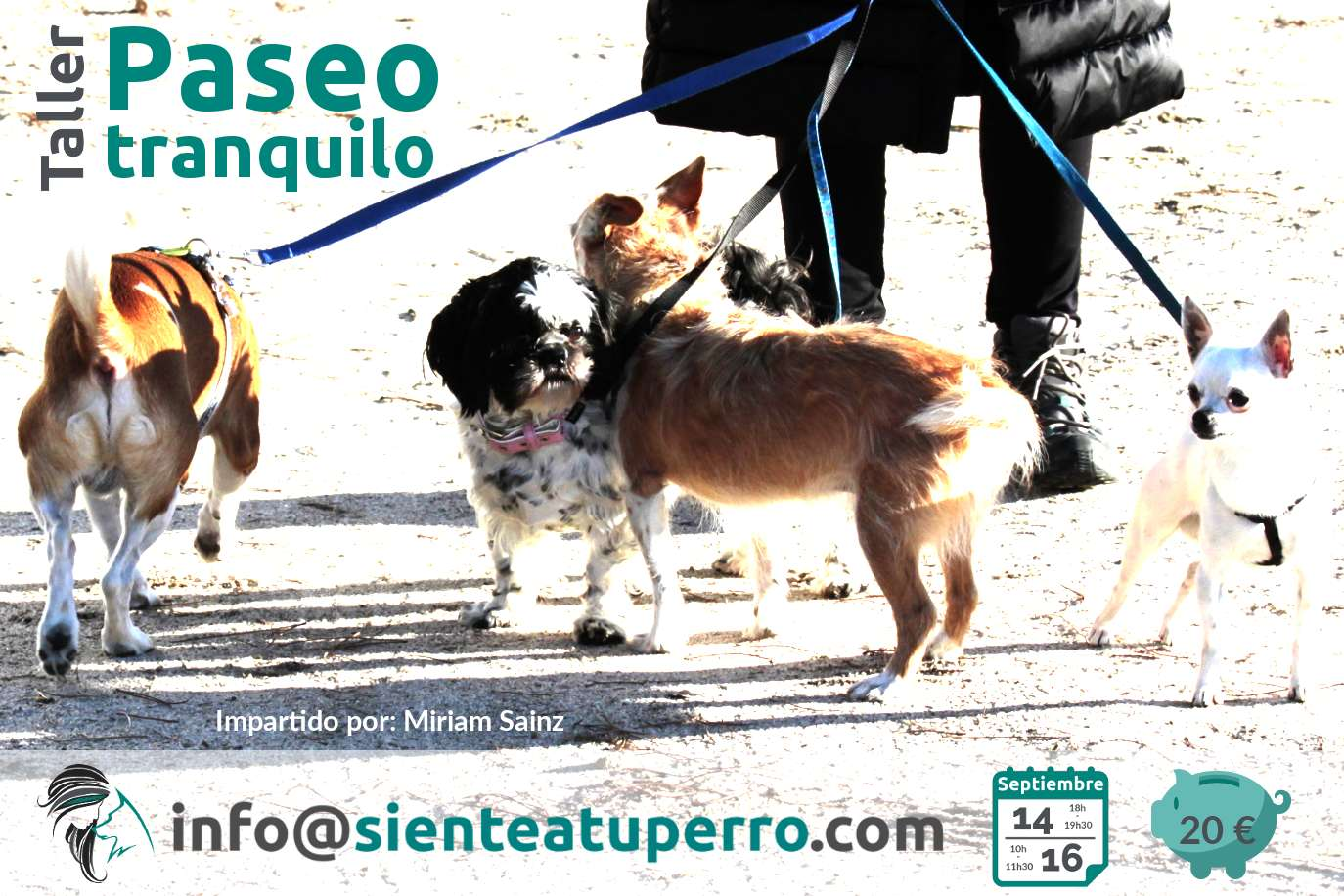 Taller: paseo tranquilo