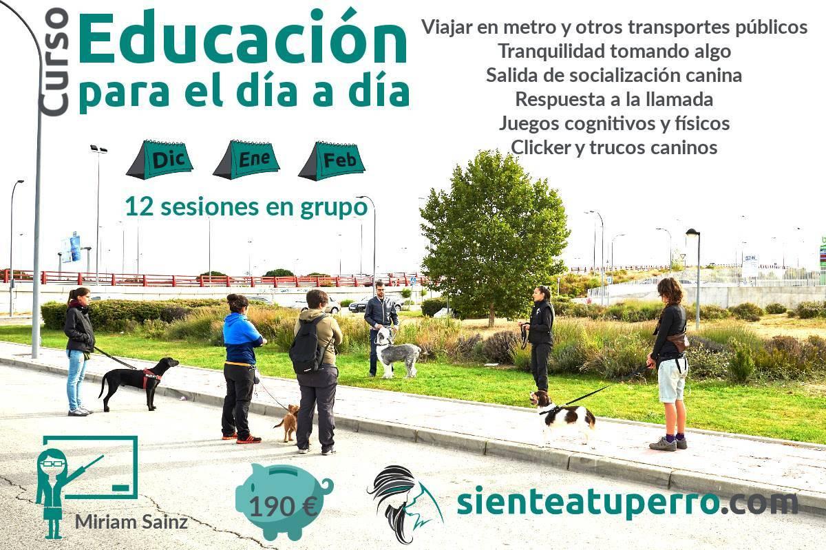 Curso trimestral: Educación para el día a día