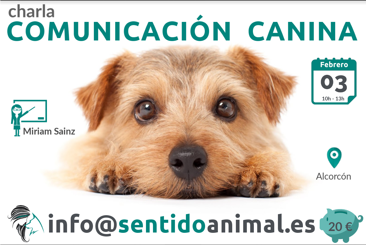 Charla: Comunicación canina