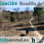 2018-03-25_Boadilla del Monte