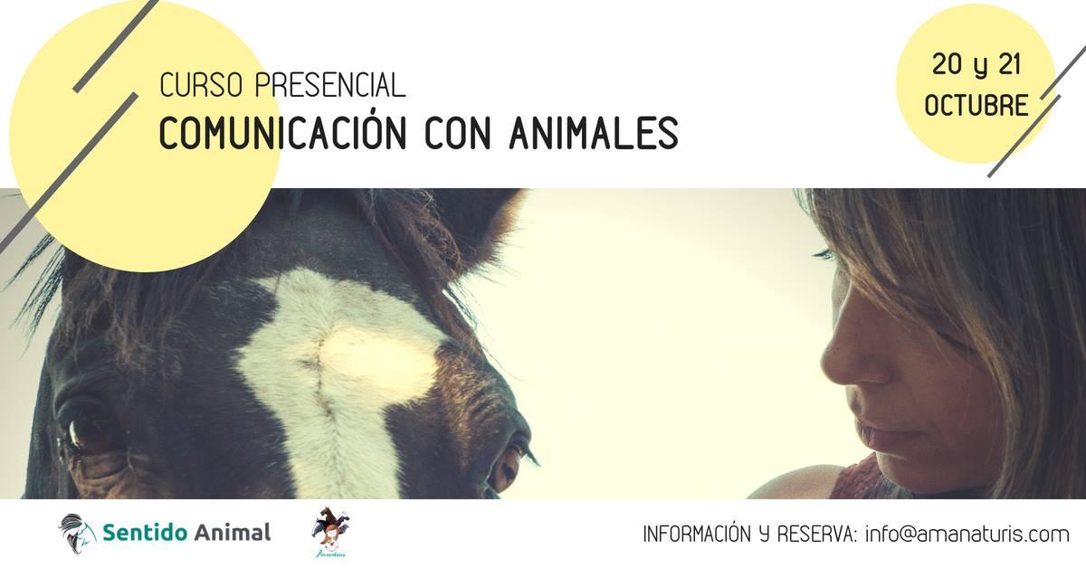 Curso Presencial Comunicación Animal