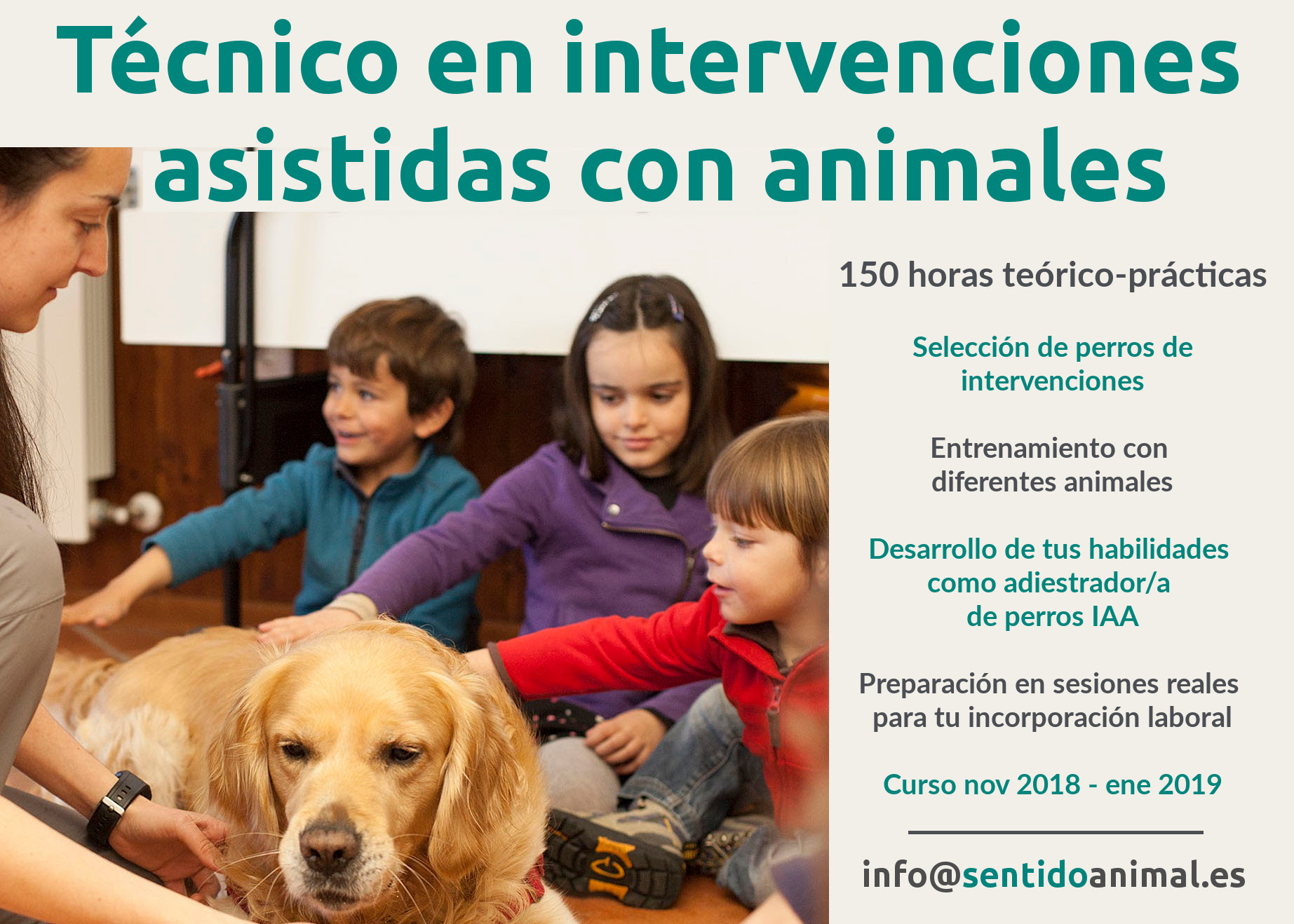 Curso de técnico en intervenciones asistidas con animales
