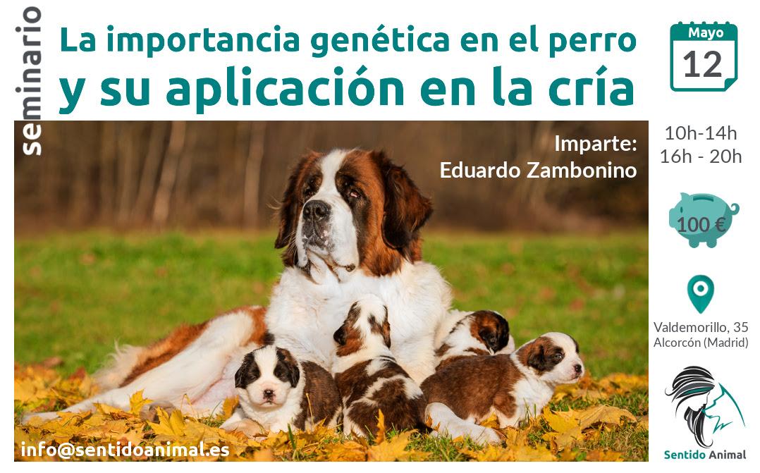 Importancia genética en el perro y su aplicación en la críaseminario