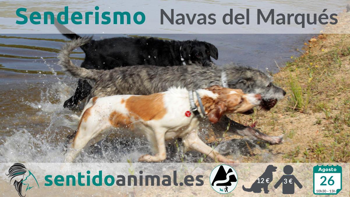 Senderismo con perros - Las Navas del Marqués, Ávila
