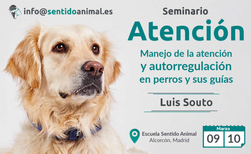 Seminario de Atencion Luis Souto