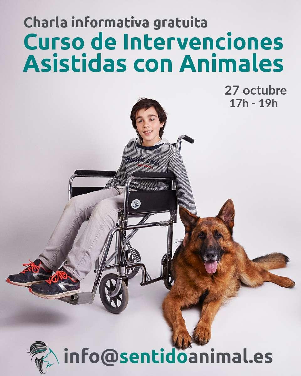 Charla informativa gratuita del curso de Intervenciones Asistidas con Animales