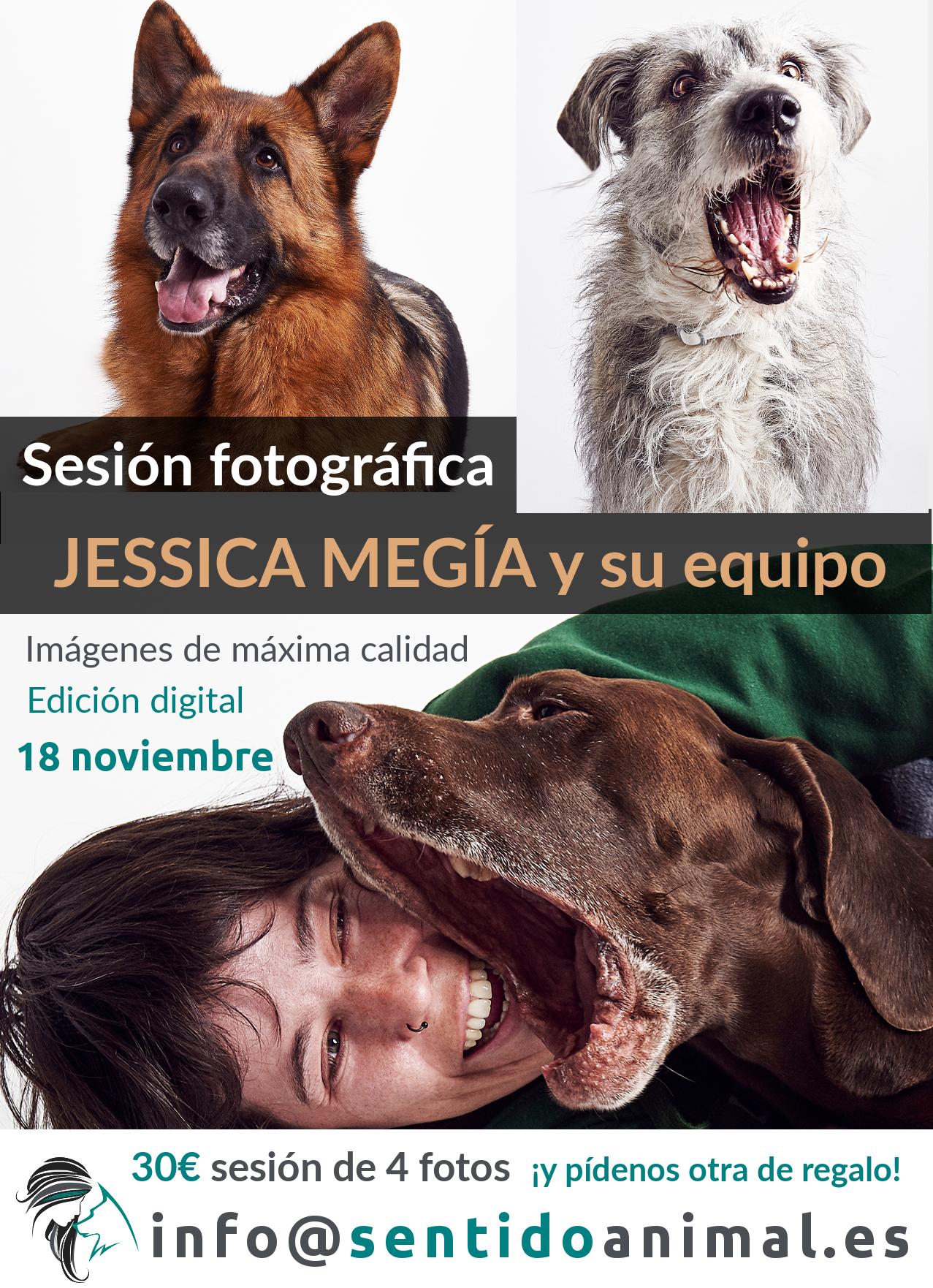 sesión fotográfica en Sentido Animal con Jessica Megía