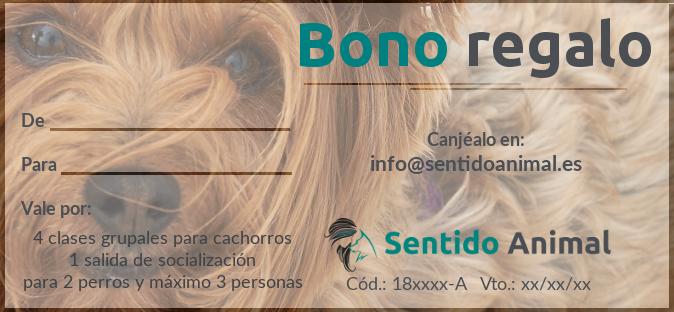 Bono-regalo-SentidoAnimal