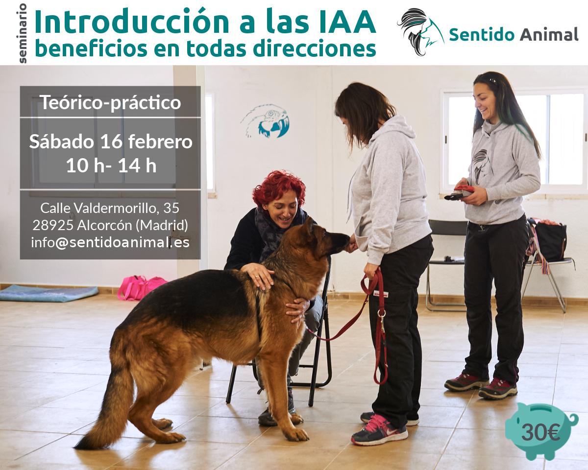 Seminario: Introducción a las IAA – beneficios en todas direcciones