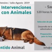 Curso Intensivo Técnico en IAA - Santander