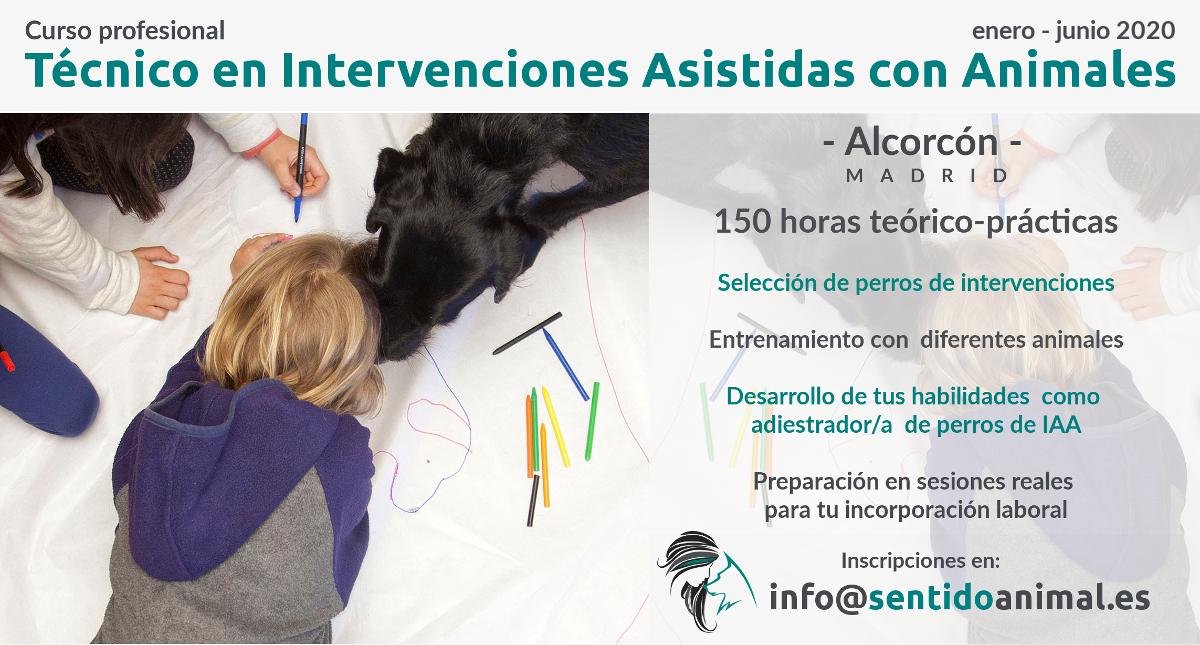 Curso extensivo de técnico en intervenciones asistidas con animales – Madrid 2020