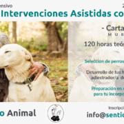 Curso Intensivo Técnico en IAA - Cartagena