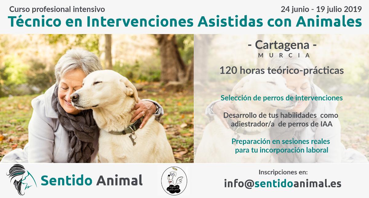Curso intensivo de técnico en intervenciones asistidas con animales – Cartagena 2019