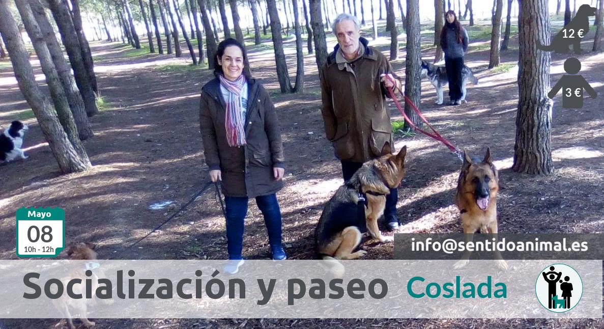 Socialización canina y paseo miércoles – junio 2019