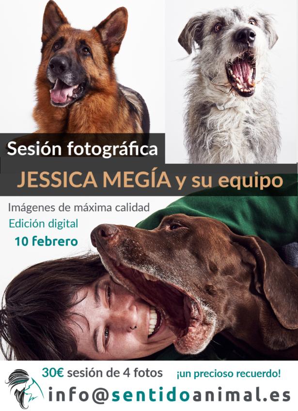 sesion fotográfica de perros y animales febrero19