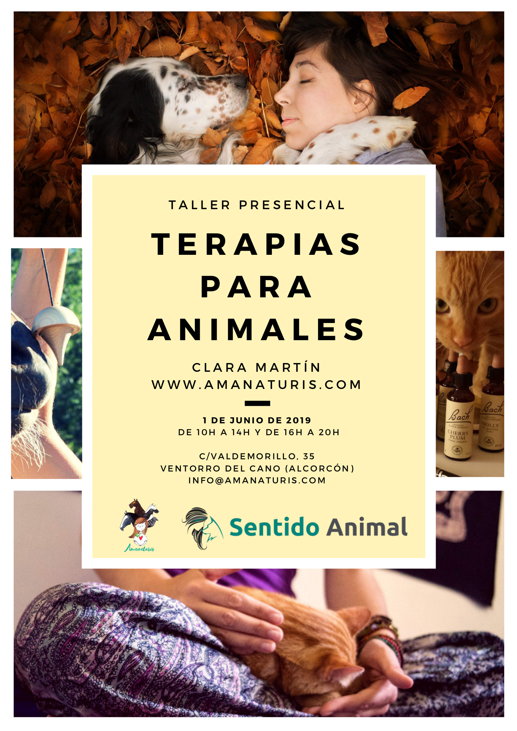 terapias naturales para animales en Sentido Animal