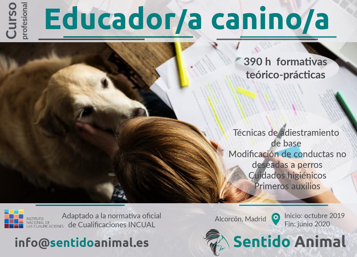 Curso profesional de Educador Canino