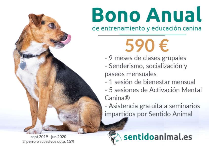 BonoAnual2019-20
