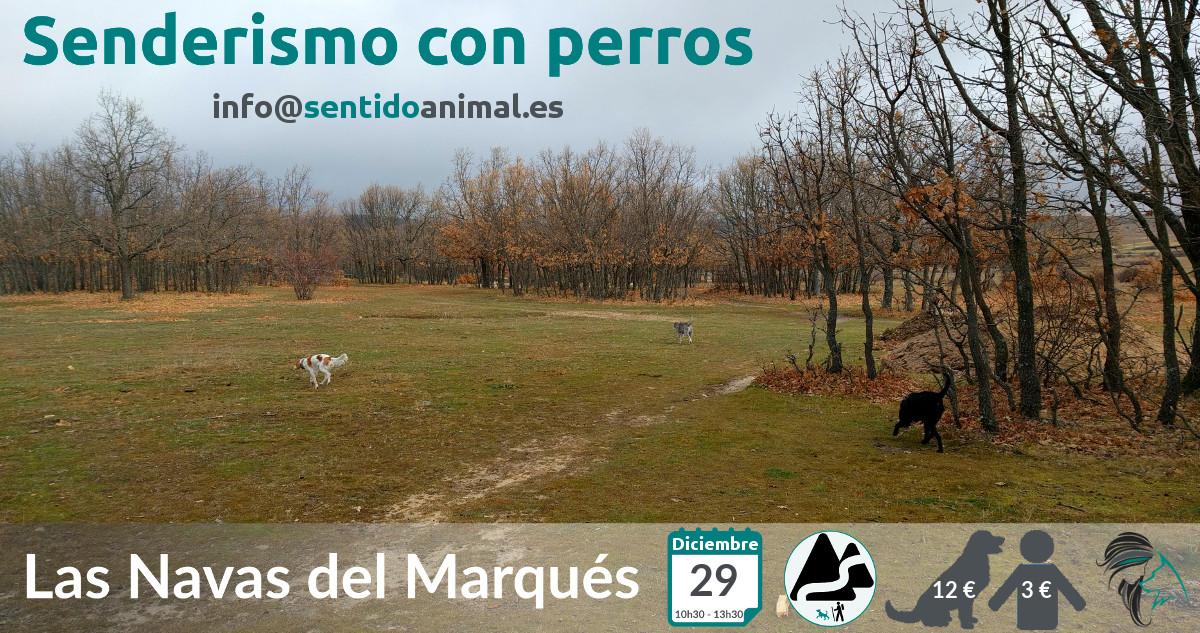 Senderismo con perros - Las Navas del Marqués