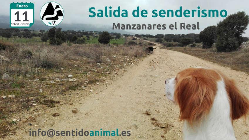 Senderismo con perros - Manzanares El Real