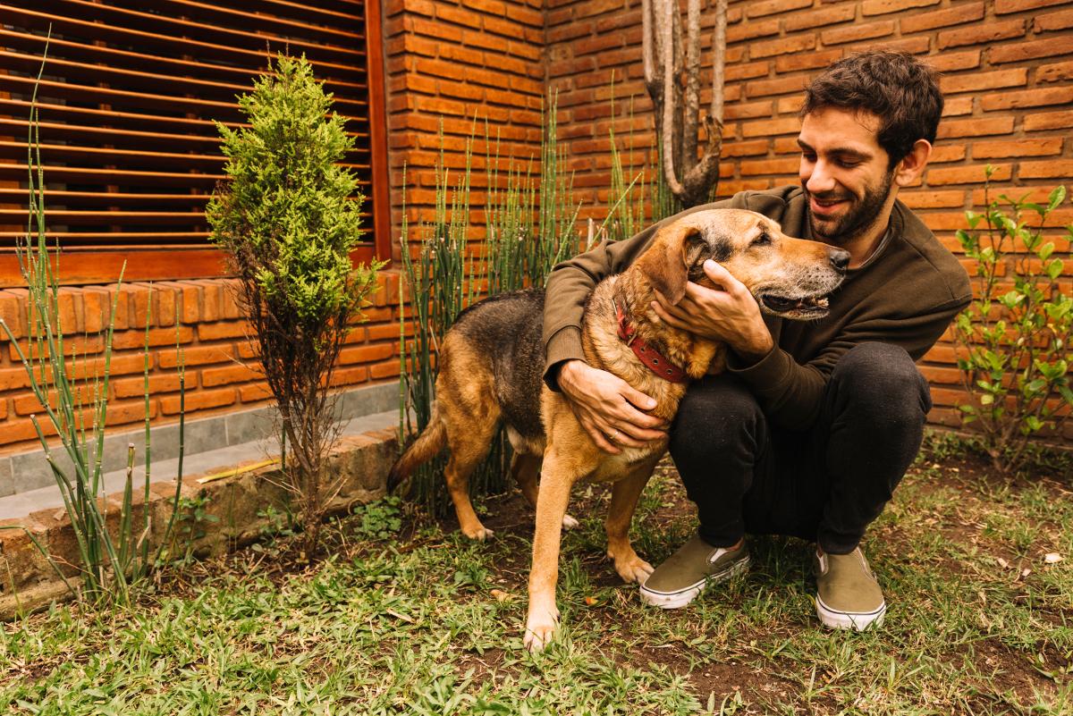 ¿Debe pasear un perro que puede salir al jardín de casa?
