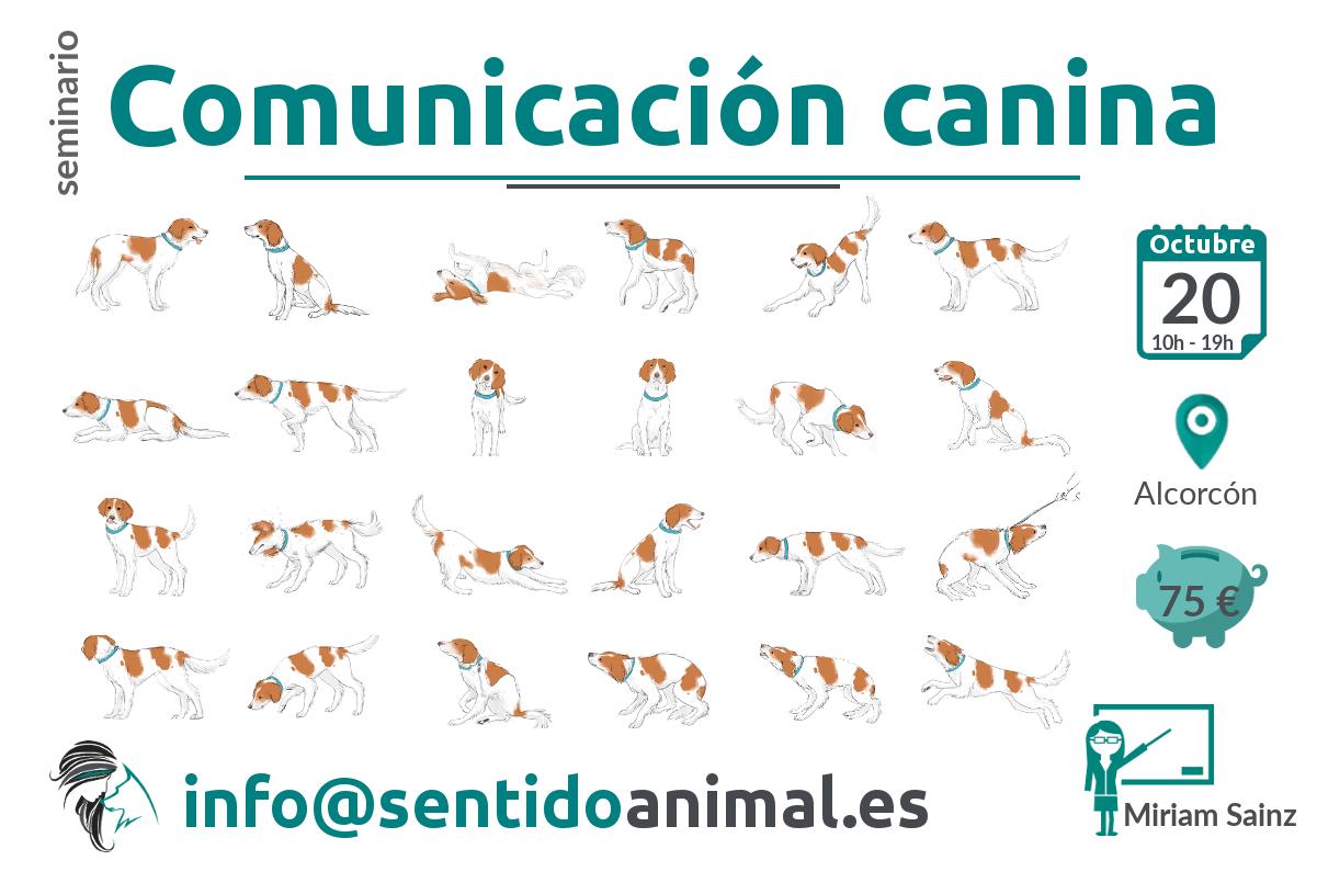Seminario de comunicación canina
