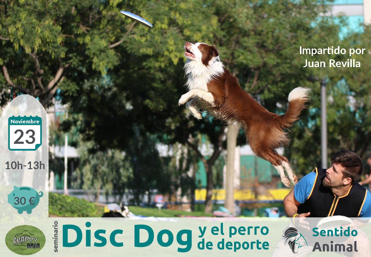 Seminario de disc dog y el perro de deporte