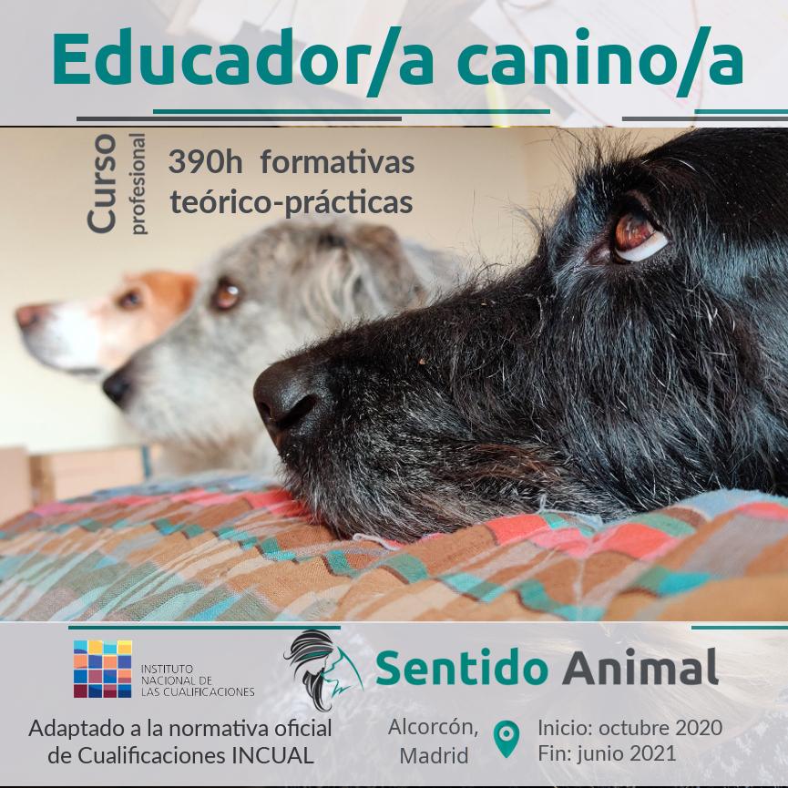 Curso profesional de Educador/a Canino/a – III edición