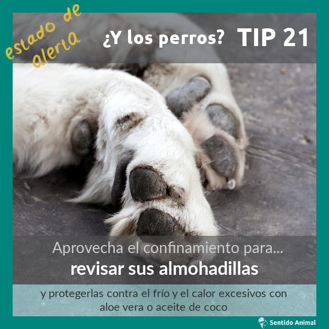 TIP 21 – revisar sus almohadillas – estado de alerta