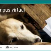 Campus virtual - Sentido Animal
