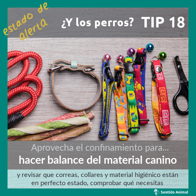 TIP 18 – hacer balance del material canino – estado de alerta