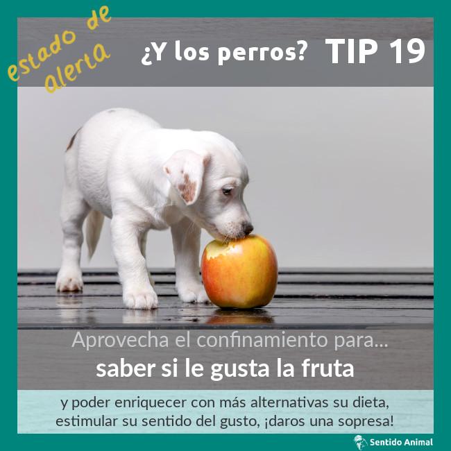 TIP 19 – saber si le gusta la fruta – estado de alerta