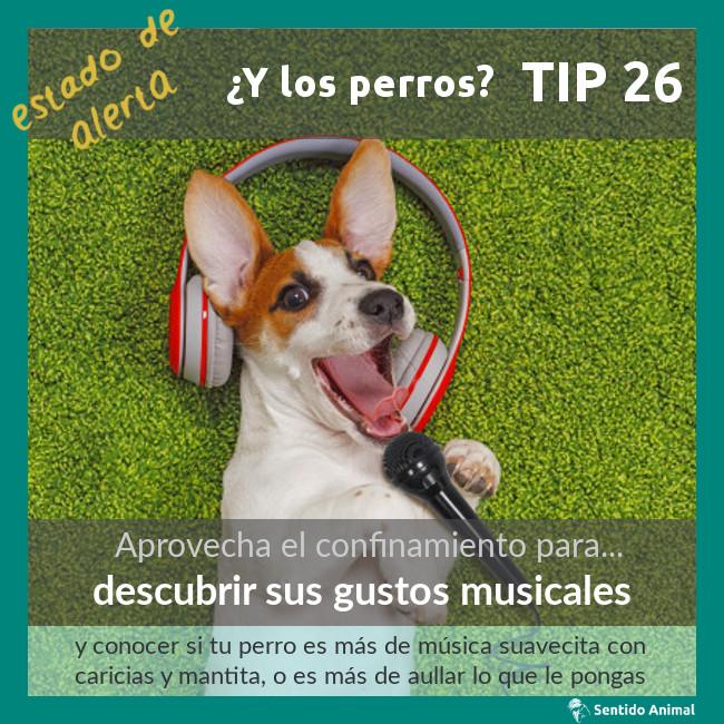 TIP 26 – descubrir sus gustos musicales – estado de alerta