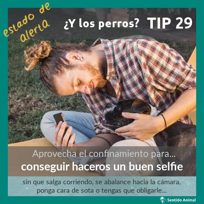 TIP 29 – conseguir haceros un buen selfie – estado de alerta