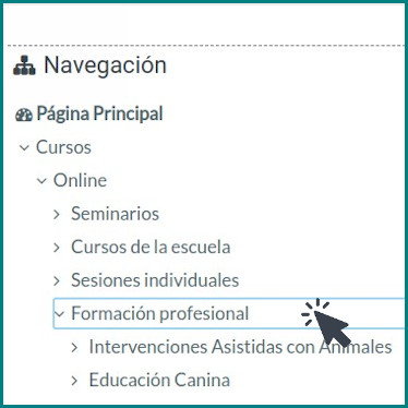 Campus online Sentido Animal