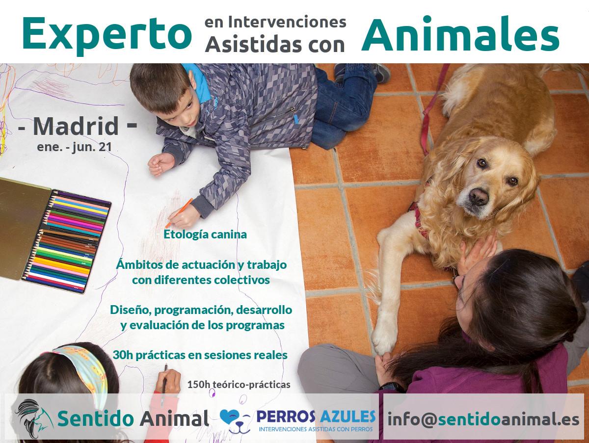 Experto en Intervenciones Asistidas con Animales - Alcorcón2021