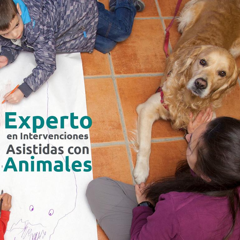 Experto en Intervenciones Asistidas con animales - Alcorcón_20-21_cuad
