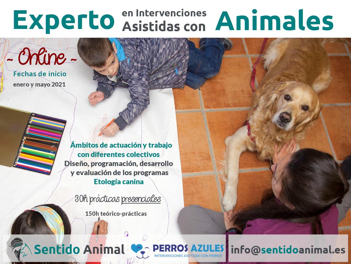 Curso online Técnico en Intervenciones Asistidas con Animales