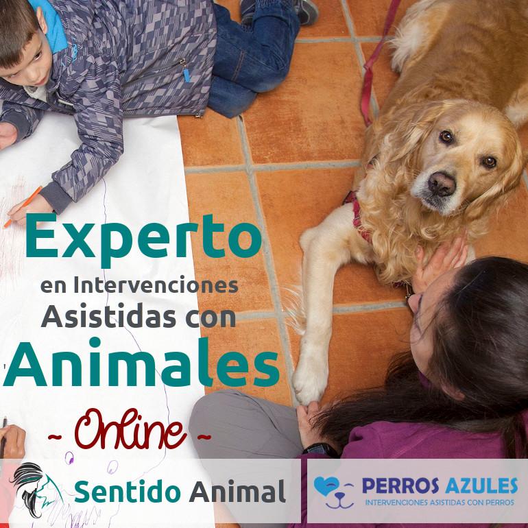 Experto en Intervenciones Asistidas con Animales - ONLINE_20-21_cuad