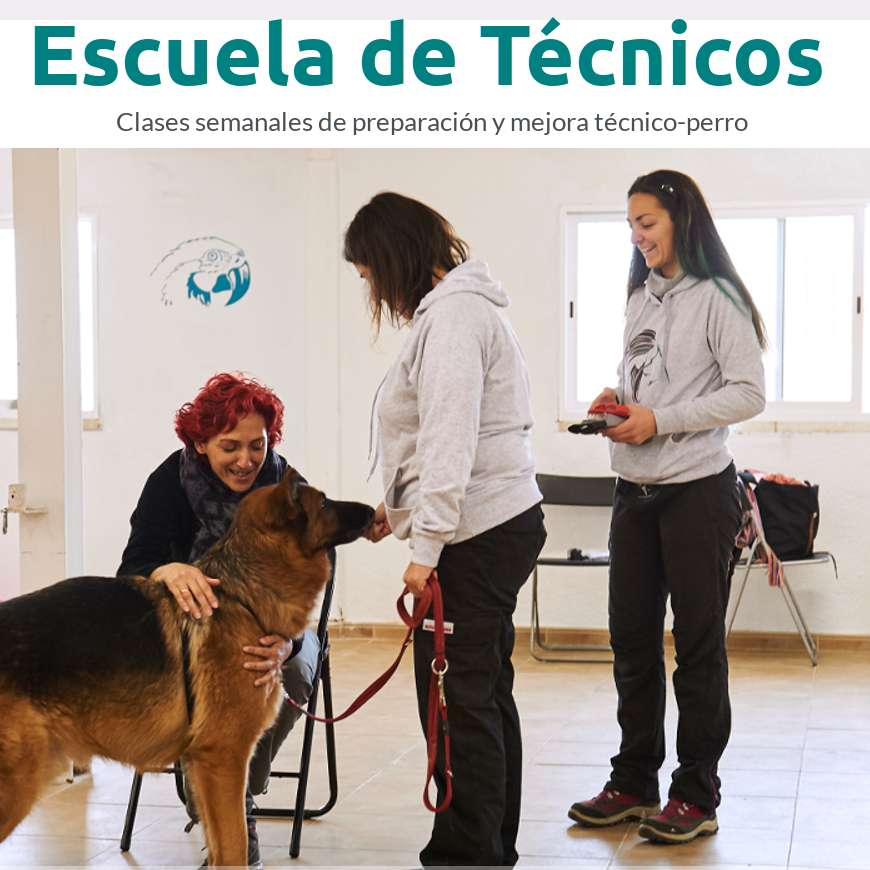 Escuela-de-tecnicos en Intervenciones Asistidas con Animales