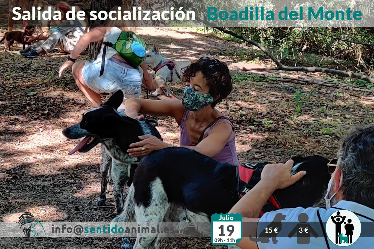 Socialización canina y paseo – 19 julio 2020