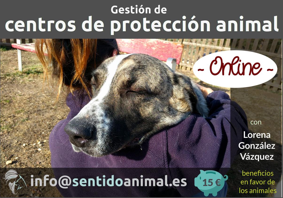Gestion de Centros de Protección Animal - CPA seminario online